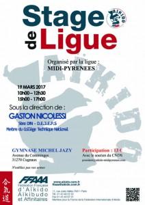 stage-ligue-nicolessi